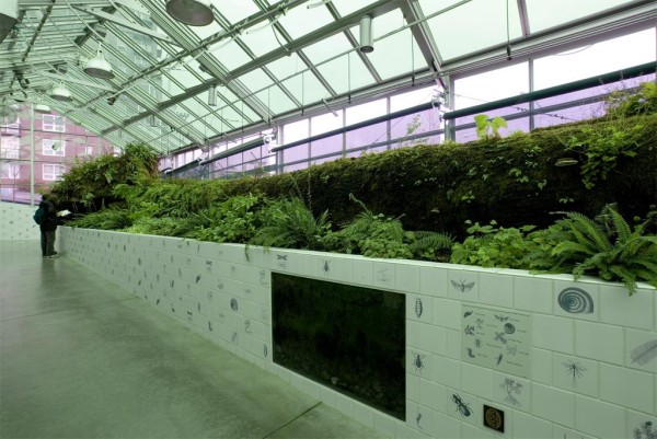 Mark Dion's Neukom Vivarium, Olympic Sculpture Park. Image courtesy of the Seattle Art Museum.
