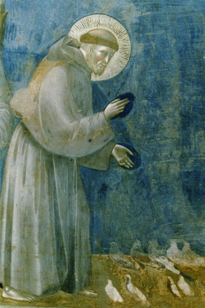 Detail of Giotto's c. 1290 fresco Sermon to the Birds, Upper Church of San Francesco, Assisi, Italy. Image courtesy of Artstor.