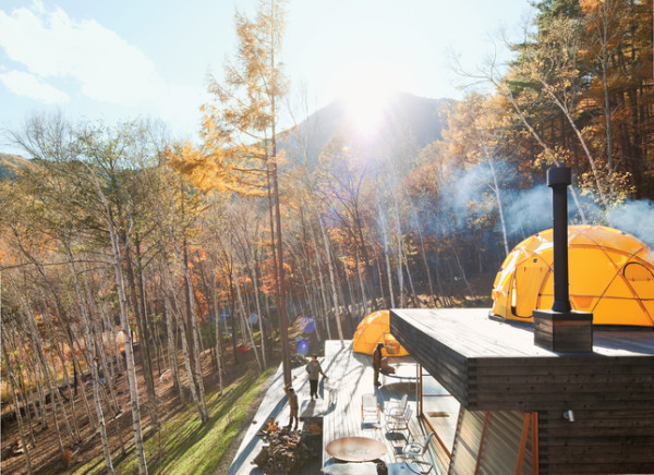 The Kobayashi weekend retreat and surrounding forest. Image courtesy of Dwell Magazine; photograph by Dean Kaufman.